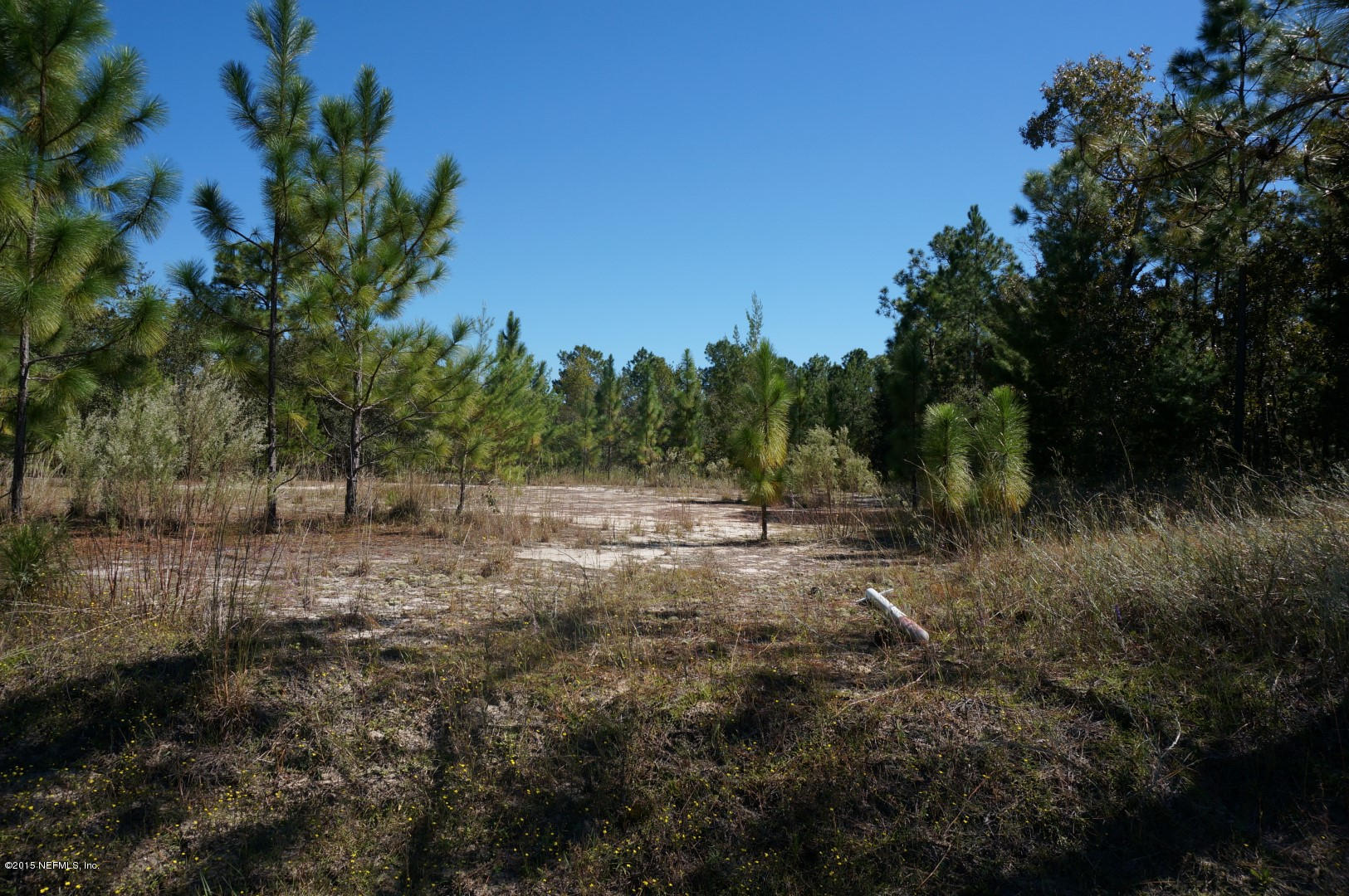 6999 STATE ROAD 21, KEYSTONE HEIGHTS, FLORIDA 32656-6918, ,Commercial,For sale,STATE ROAD 21,774683
