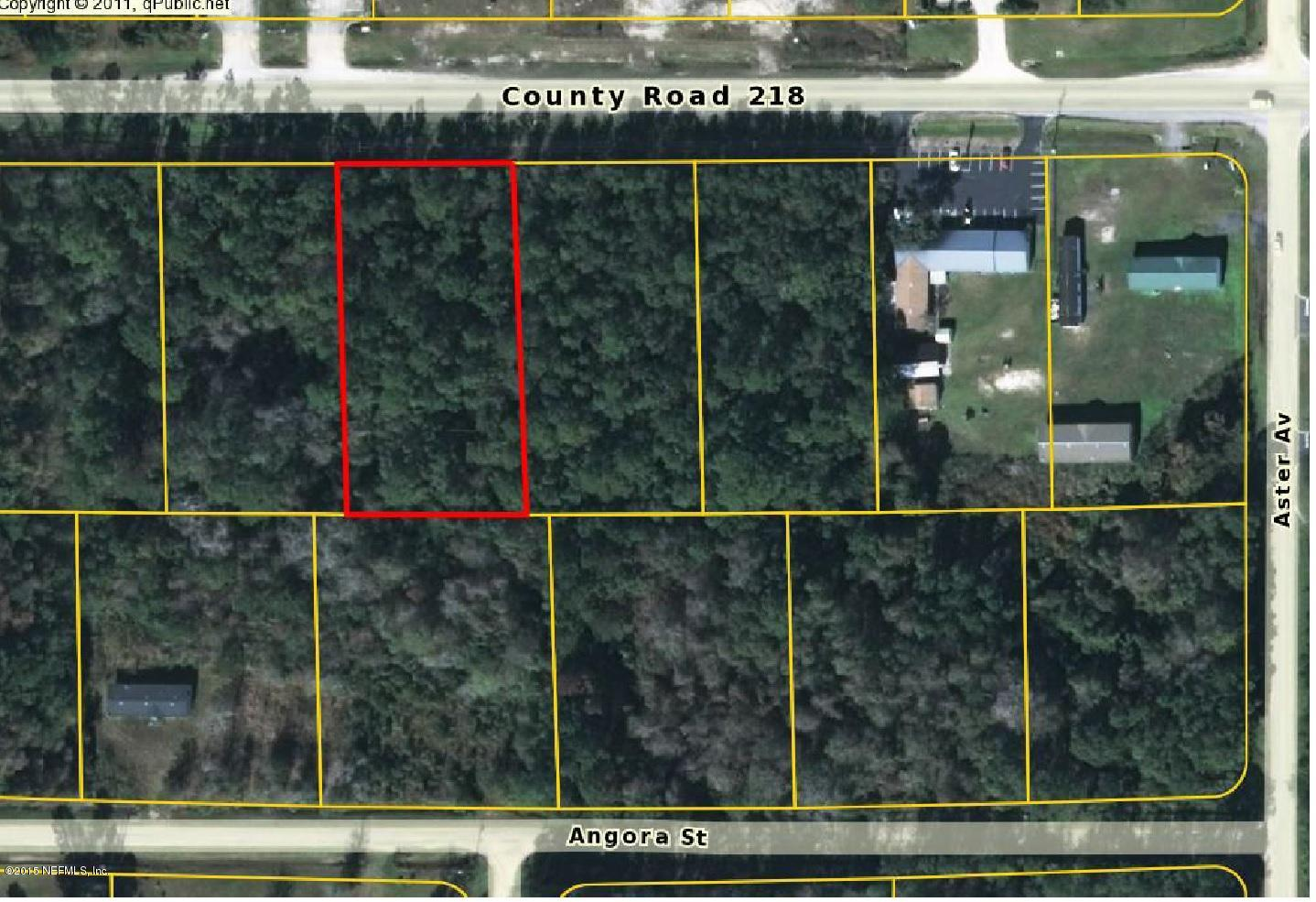 4177 COUNTY ROAD 218, MIDDLEBURG, FLORIDA 32068, ,Vacant land,For sale,COUNTY ROAD 218,780188