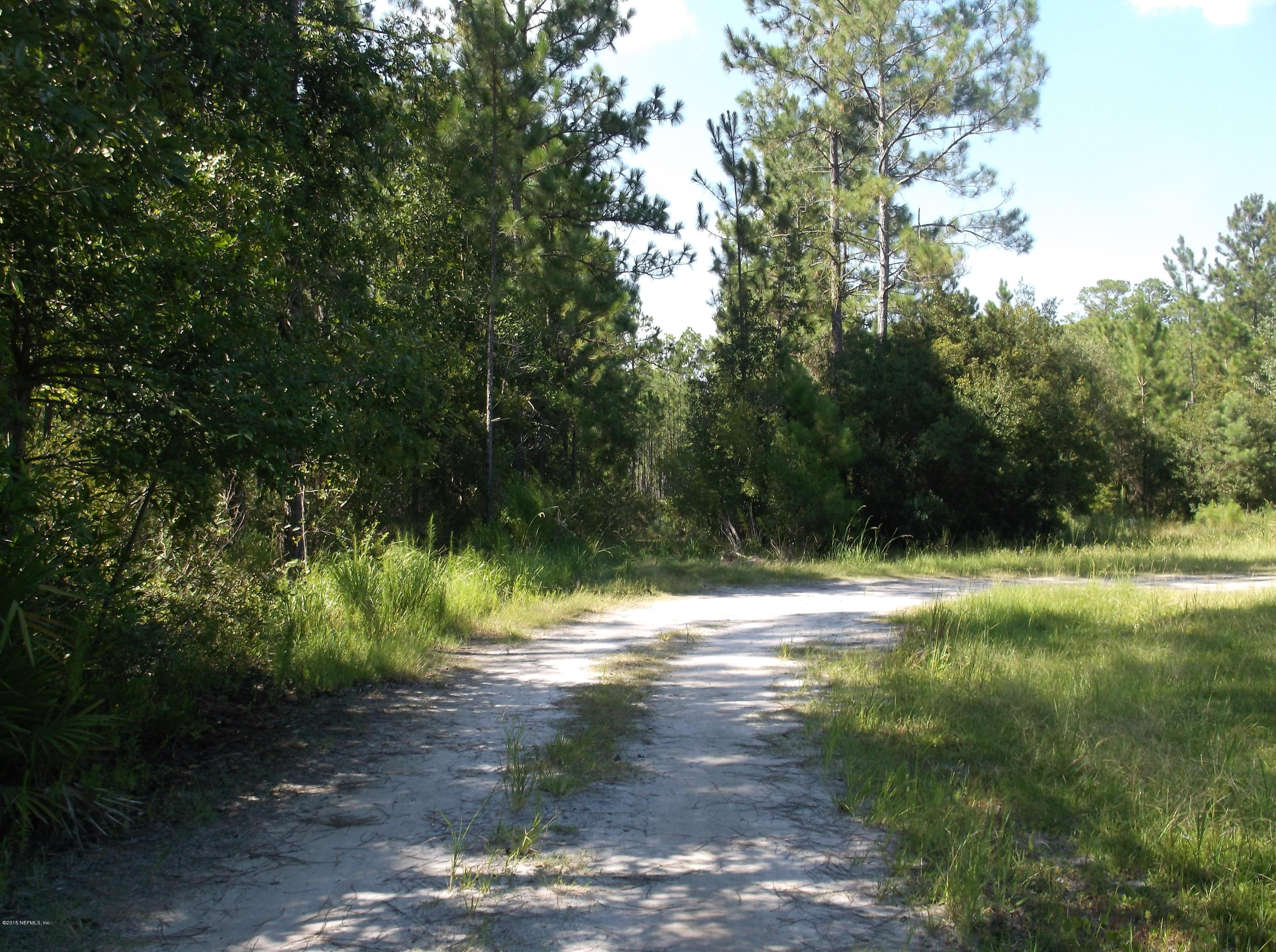 000 LENDA, MIDDLEBURG, FLORIDA 32068, ,Vacant land,For sale,LENDA,786353