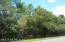 14020 SAWPIT RD, JACKSONVILLE, FL 32226