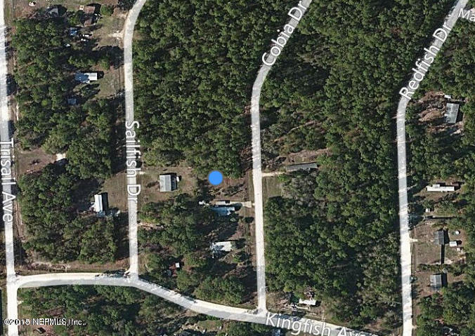 109 COBIA, PALATKA, FLORIDA 32177, ,Vacant land,For sale,COBIA,800702