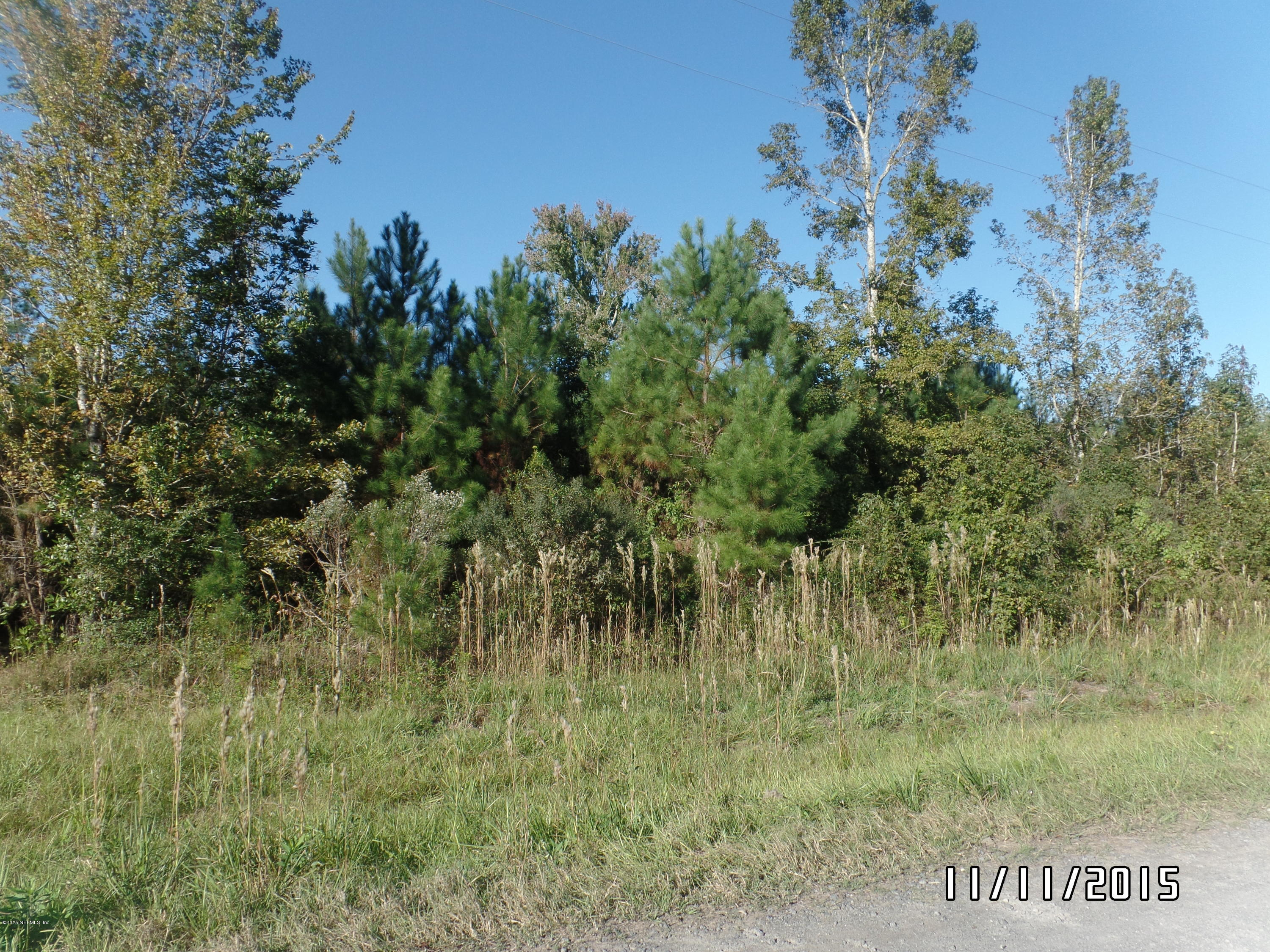 7847 RED TOP, MACCLENNY, FLORIDA 32063, ,Vacant land,For sale,RED TOP,801834