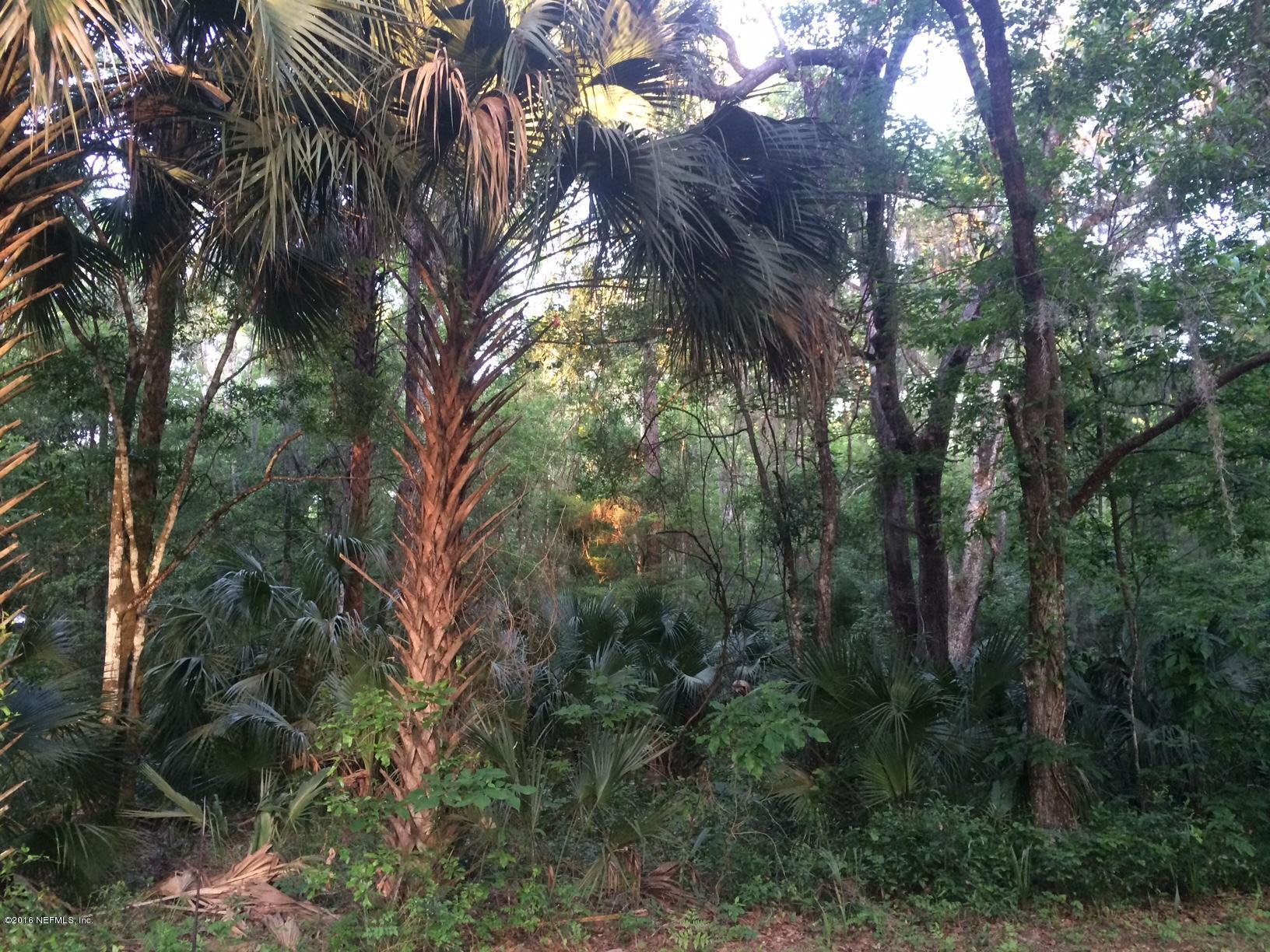 125 SPRING CREEK, SAN MATEO, FLORIDA 32187, ,Vacant land,For sale,SPRING CREEK,822443