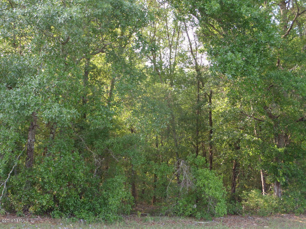 00 County Rd 219, MELROSE, FLORIDA 32666, ,Vacant land,For sale,County Rd 219,823456