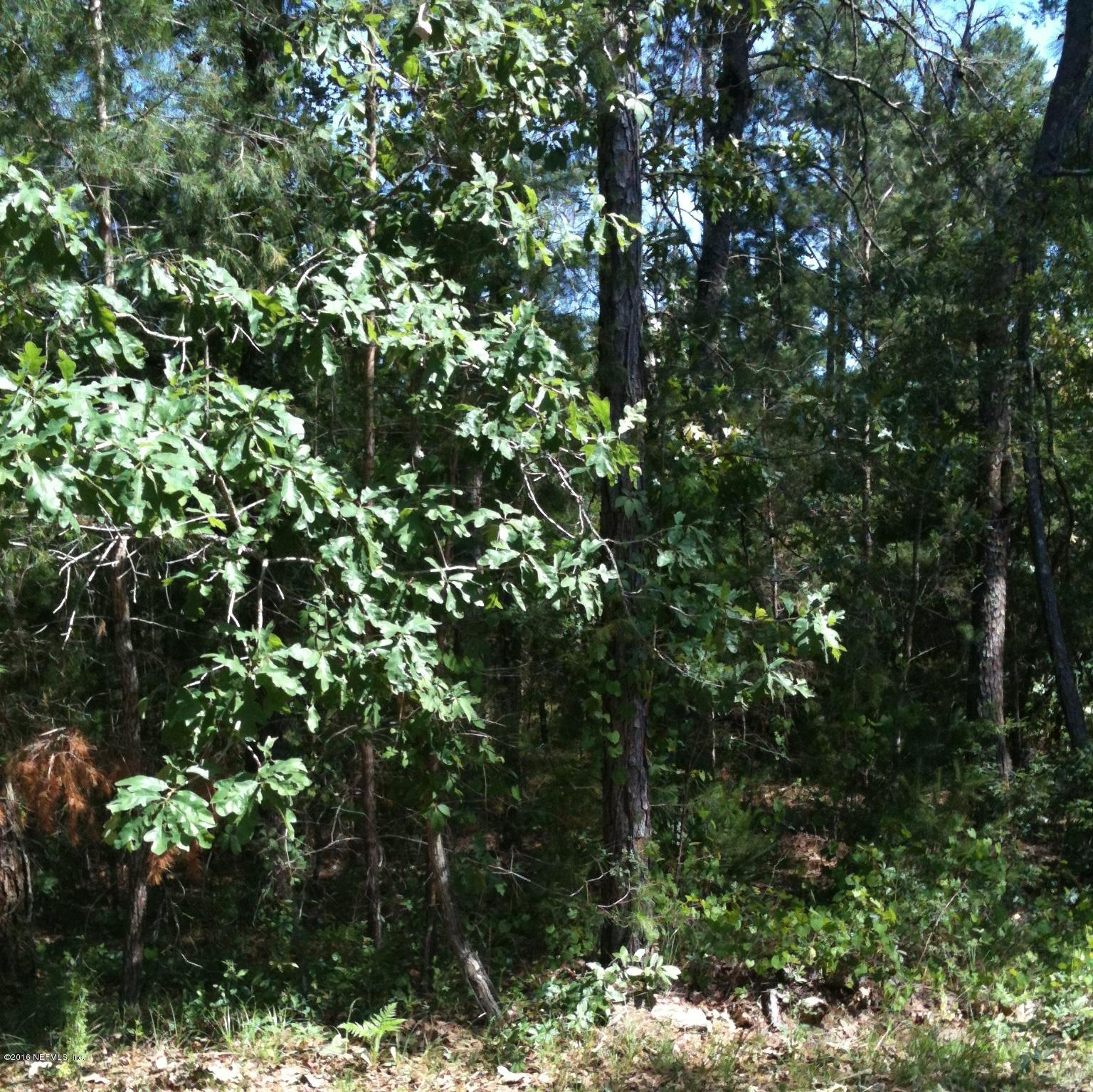 4421 JUNCTION, MIDDLEBURG, FLORIDA 32068, ,Vacant land,For sale,JUNCTION,829275