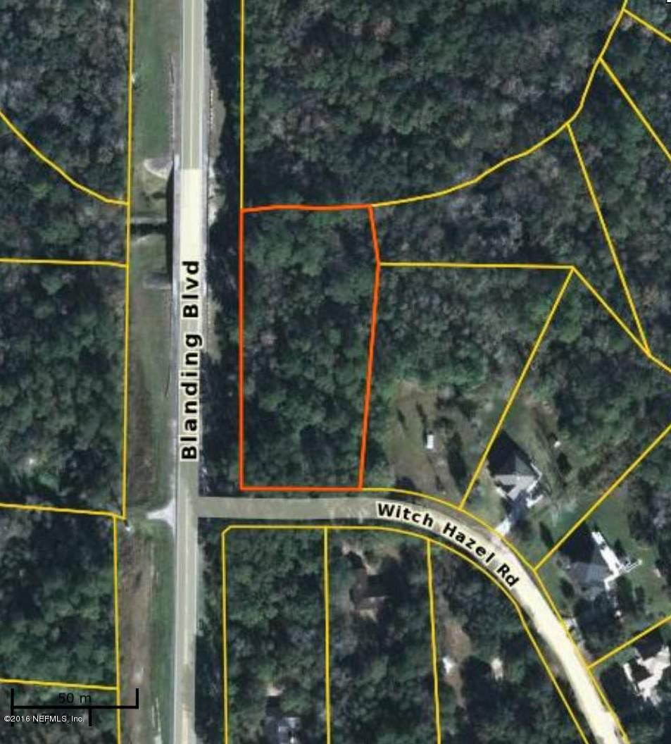2843 WITCH HAZEL, MIDDLEBURG, FLORIDA 32068, ,Vacant land,For sale,WITCH HAZEL,822758