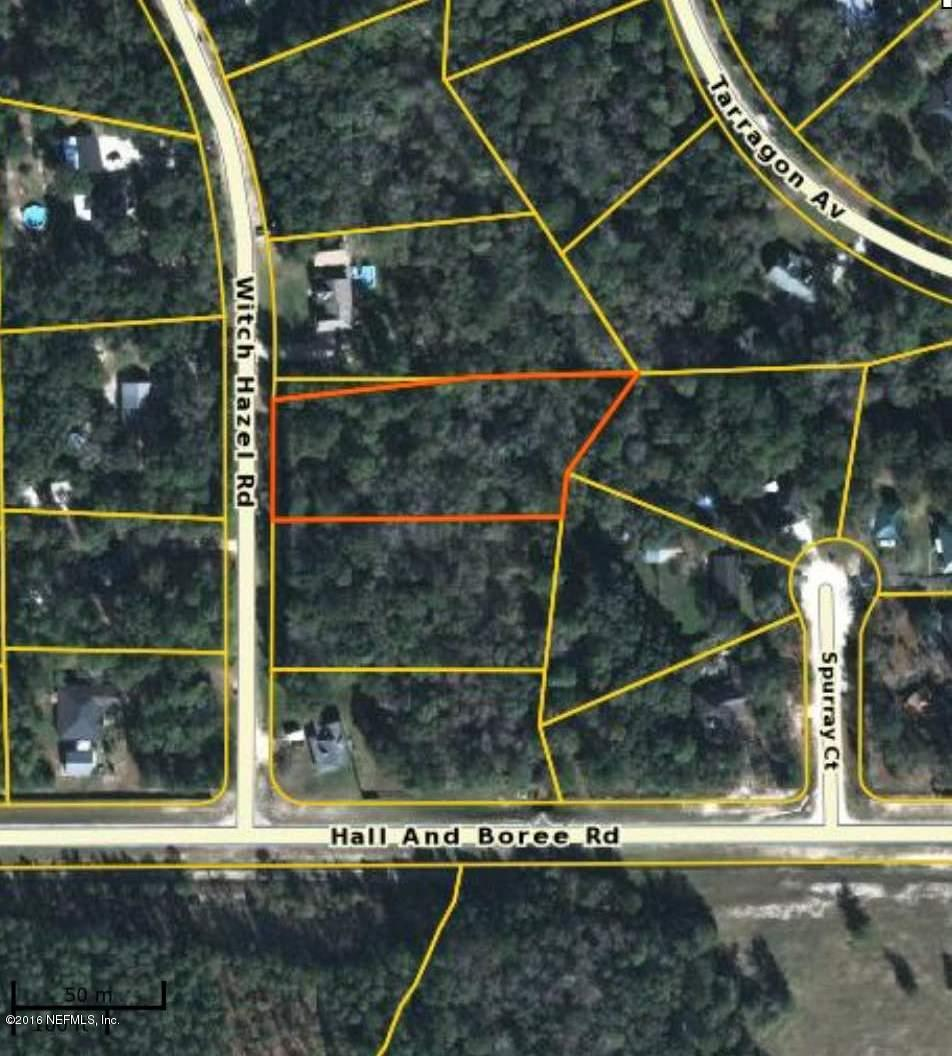 2885 WITCH HAZEL, MIDDLEBURG, FLORIDA 32068, ,Vacant land,For sale,WITCH HAZEL,822757