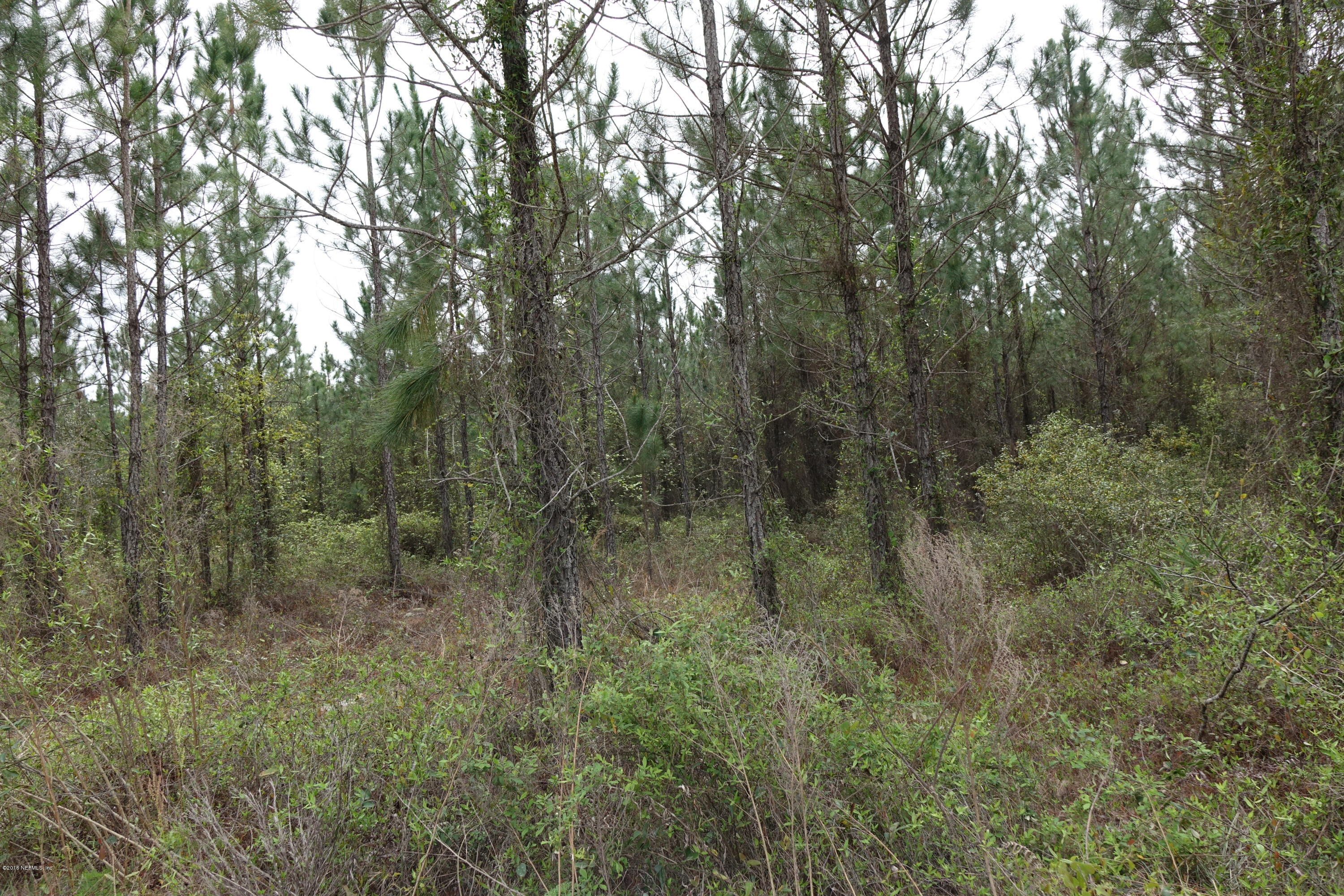 0 CR 121, BRYCEVILLE, FLORIDA 32009, ,Vacant land,For sale,CR 121,771931