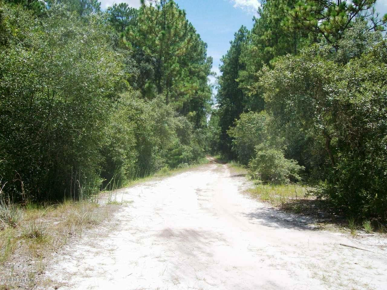 140 ARDEN, GEORGETOWN, FLORIDA 32139, ,Vacant land,For sale,ARDEN,845446