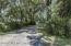 Old Oak canopy shades driveway