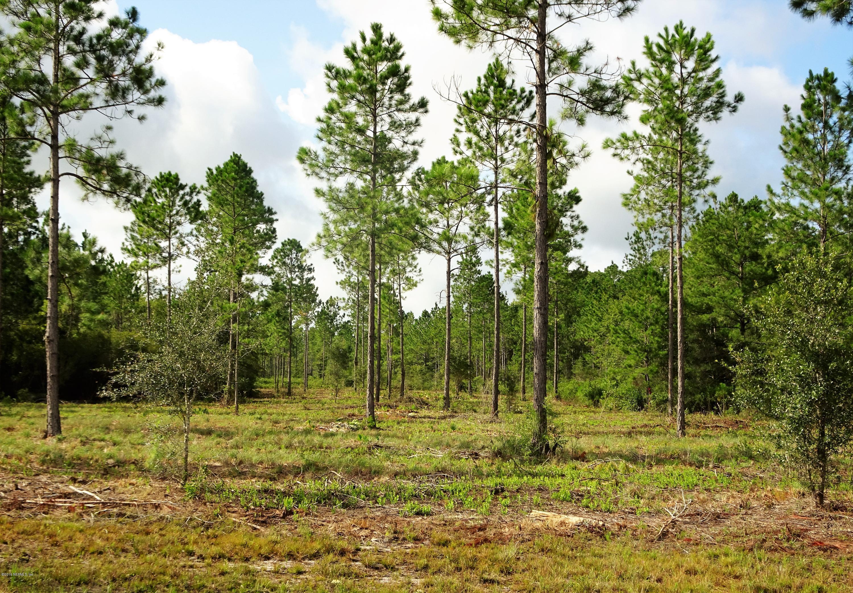 LOT 12A BRADY ACRES, JACKSONVILLE, FLORIDA 32234, ,Vacant land,For sale,BRADY ACRES,849205