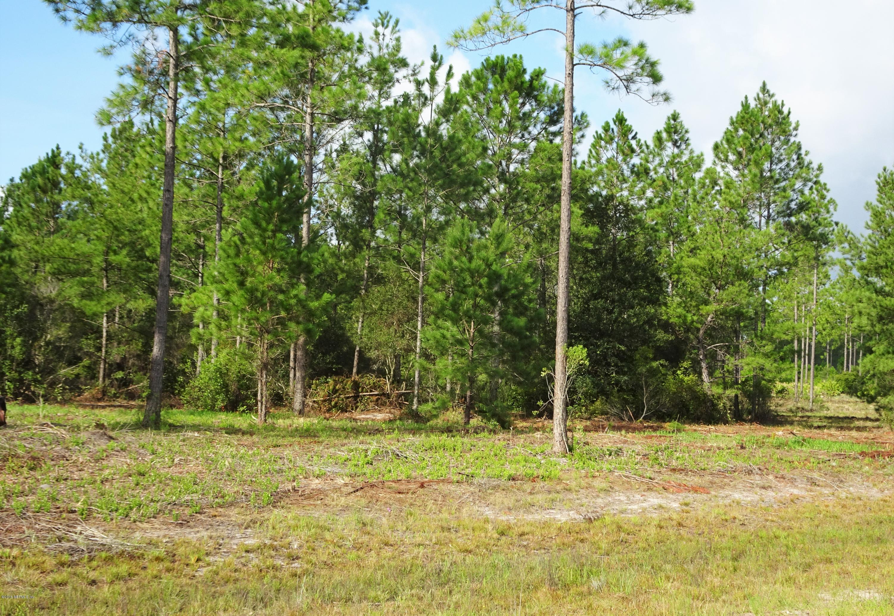 LOT 12A BRADY ACRES, JACKSONVILLE, FLORIDA 32234, ,Vacant land,For sale,BRADY ACRES,849205