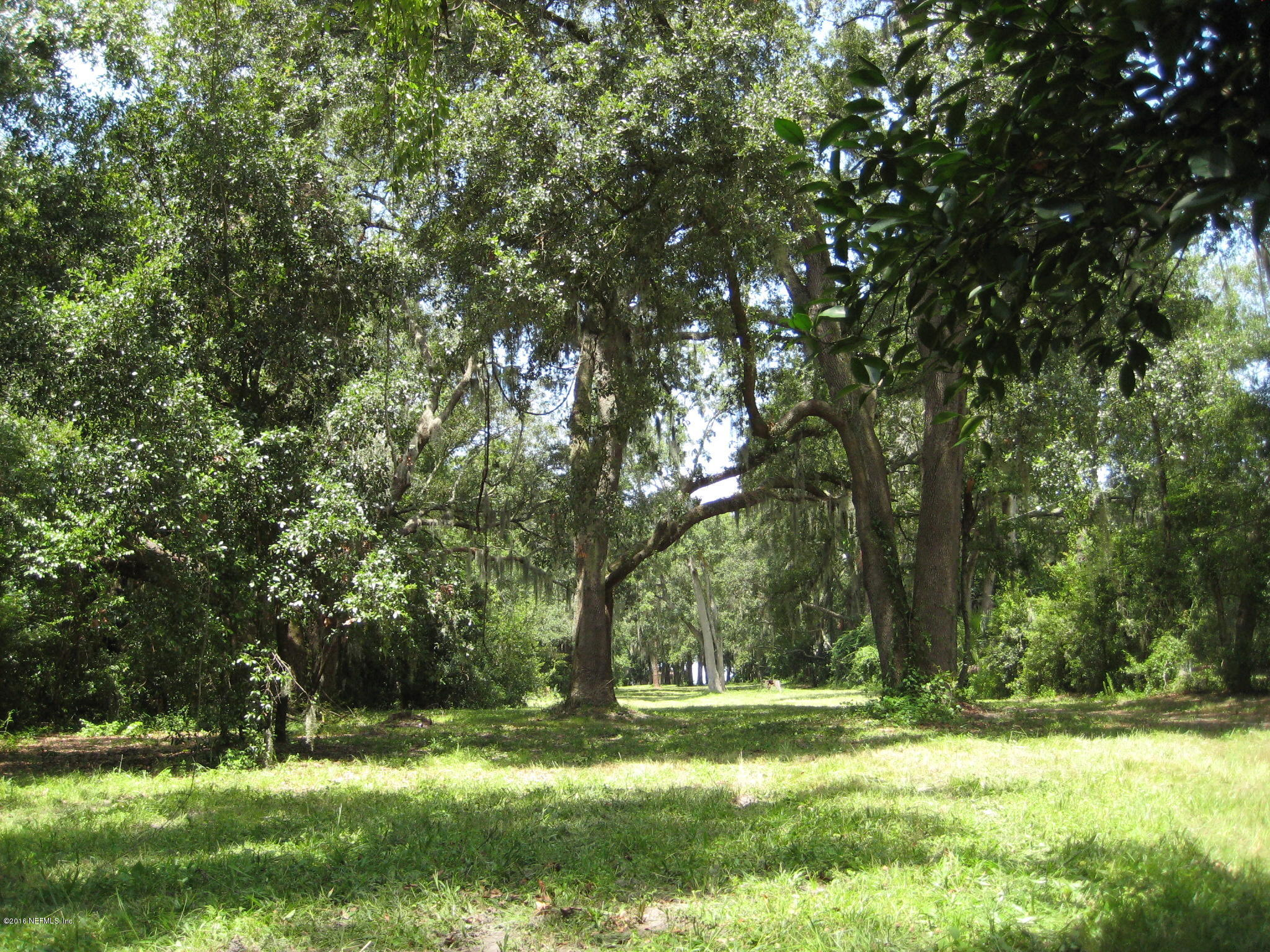 10566 SCOTT MILL, JACKSONVILLE, FLORIDA 32257, ,Vacant land,For sale,SCOTT MILL,850803