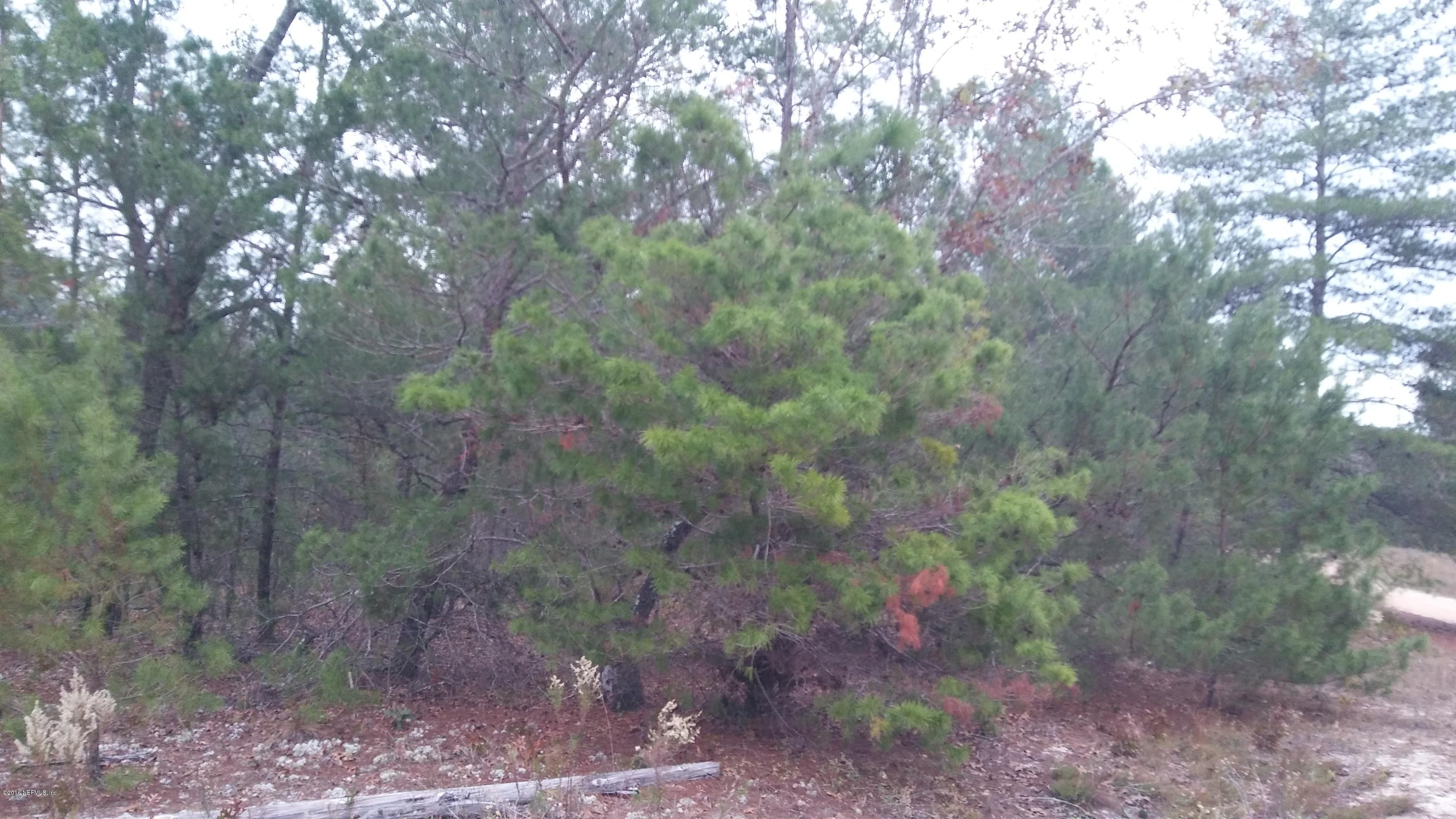 7221 CHIPOLA, KEYSTONE HEIGHTS, FLORIDA 32656, ,Vacant land,For sale,CHIPOLA,857915