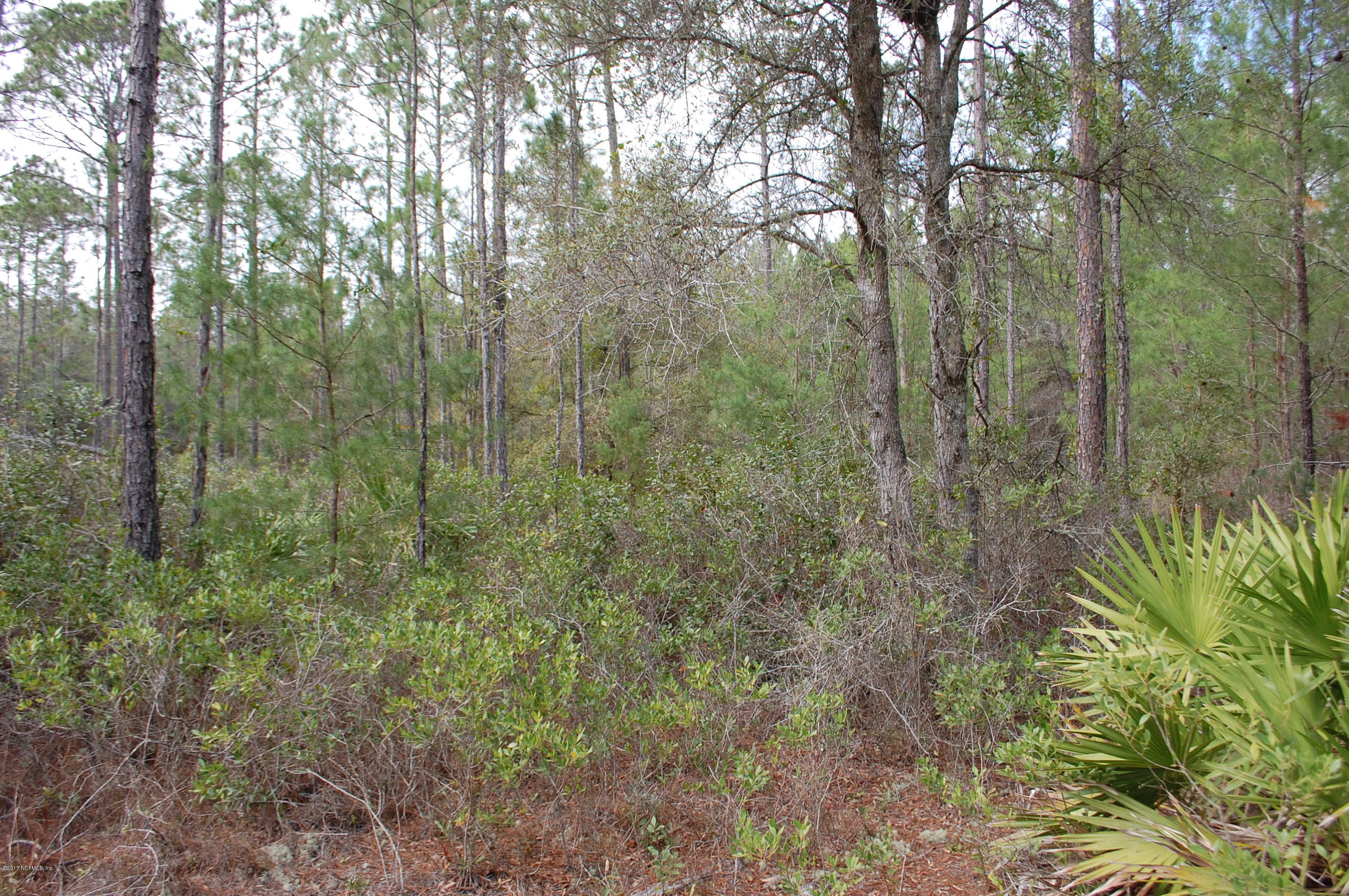 848 COUNTY RD 21, HAWTHORNE, FLORIDA 32640, ,Vacant land,For sale,COUNTY RD 21,867588