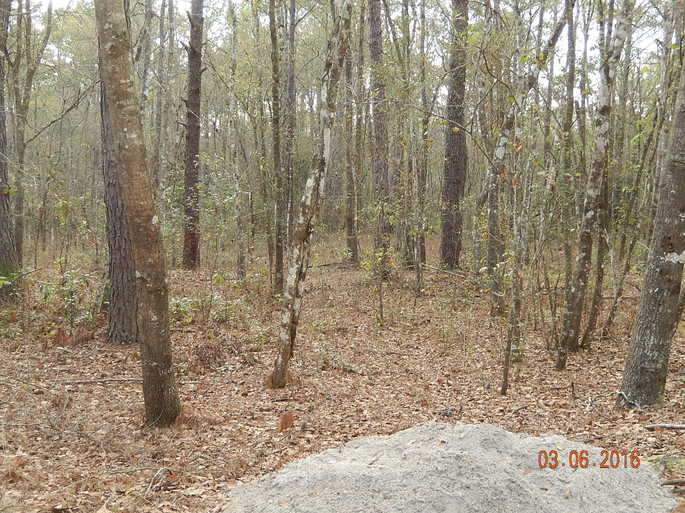 0000 LIGHTNING, MIDDLEBURG, FLORIDA 32068, ,Vacant land,For sale,LIGHTNING,875132