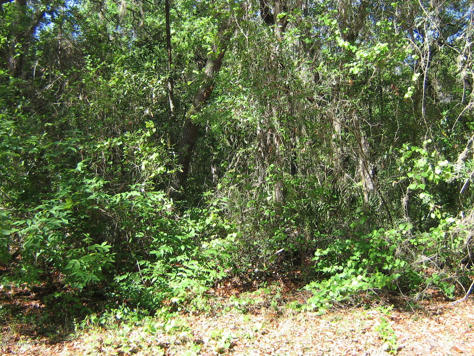 5019 HESKETT, KEYSTONE HEIGHTS, FLORIDA 32656, ,Vacant land,For sale,HESKETT,875435