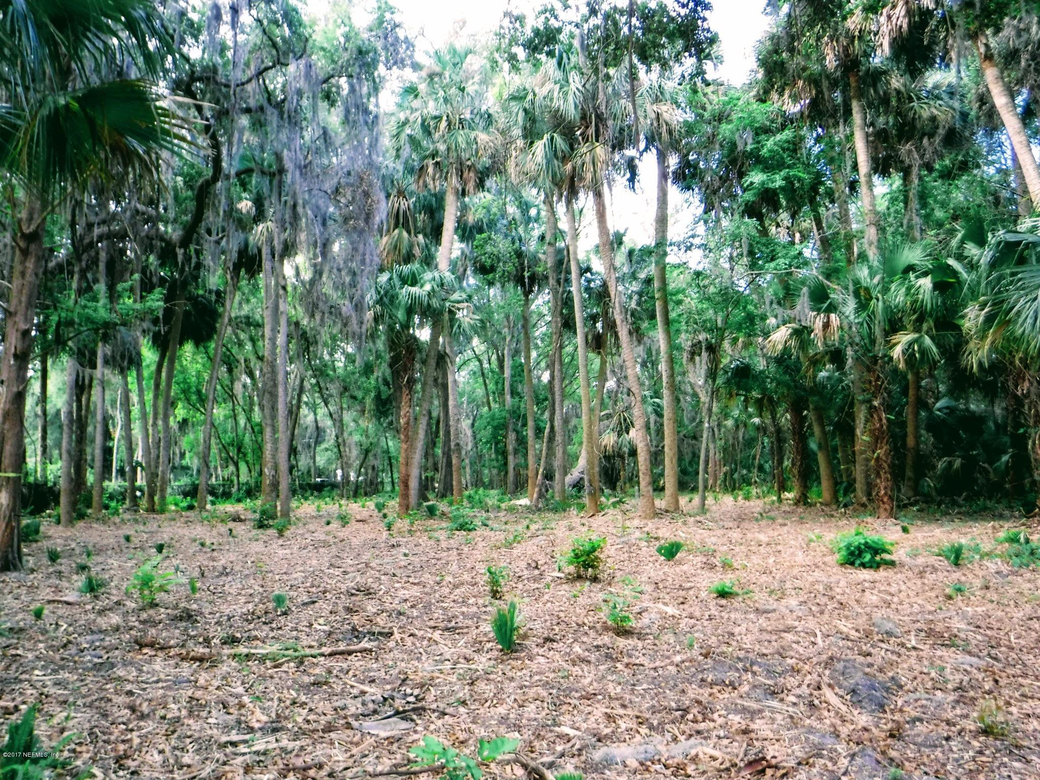 133 ORANGE TREE, EAST PALATKA, FLORIDA 32131, ,Vacant land,For sale,ORANGE TREE,873749