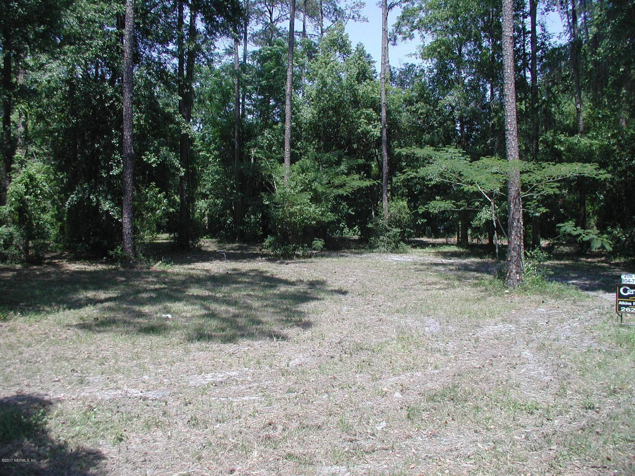 MINNESOTA M L KING, MACCLENNY, FLORIDA 32063, ,Vacant land,For sale,M L KING,880469