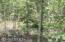 3906 CR 218, MIDDLEBURG, FL 32068