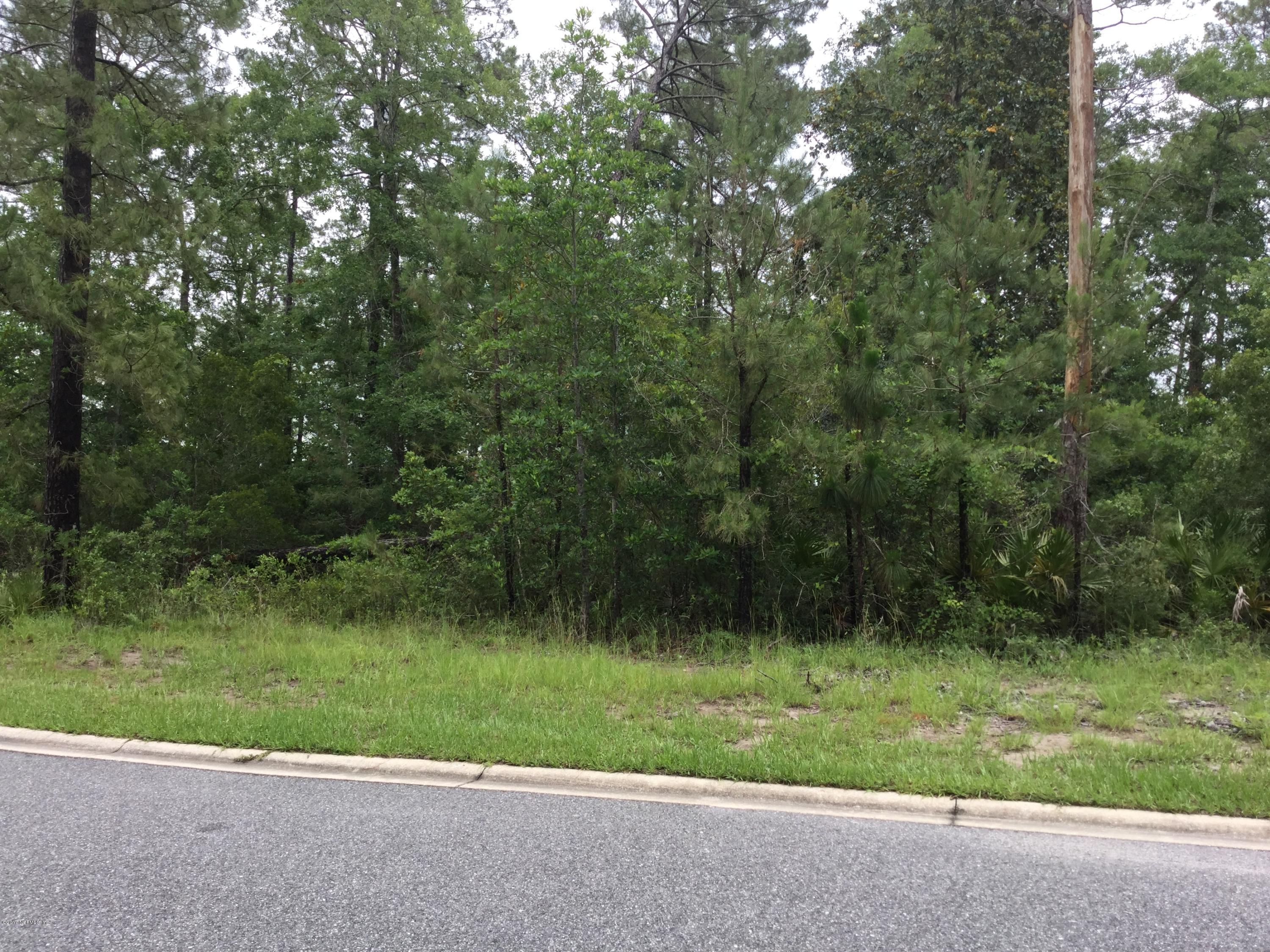 96134 DOWLING, YULEE, FLORIDA 32097, ,Vacant land,For sale,DOWLING,886131