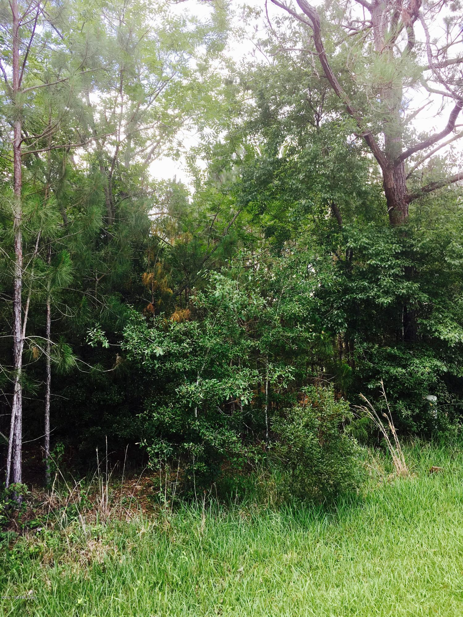 0 200TH, STARKE, FLORIDA 32091, ,Vacant land,For sale,200TH,888844