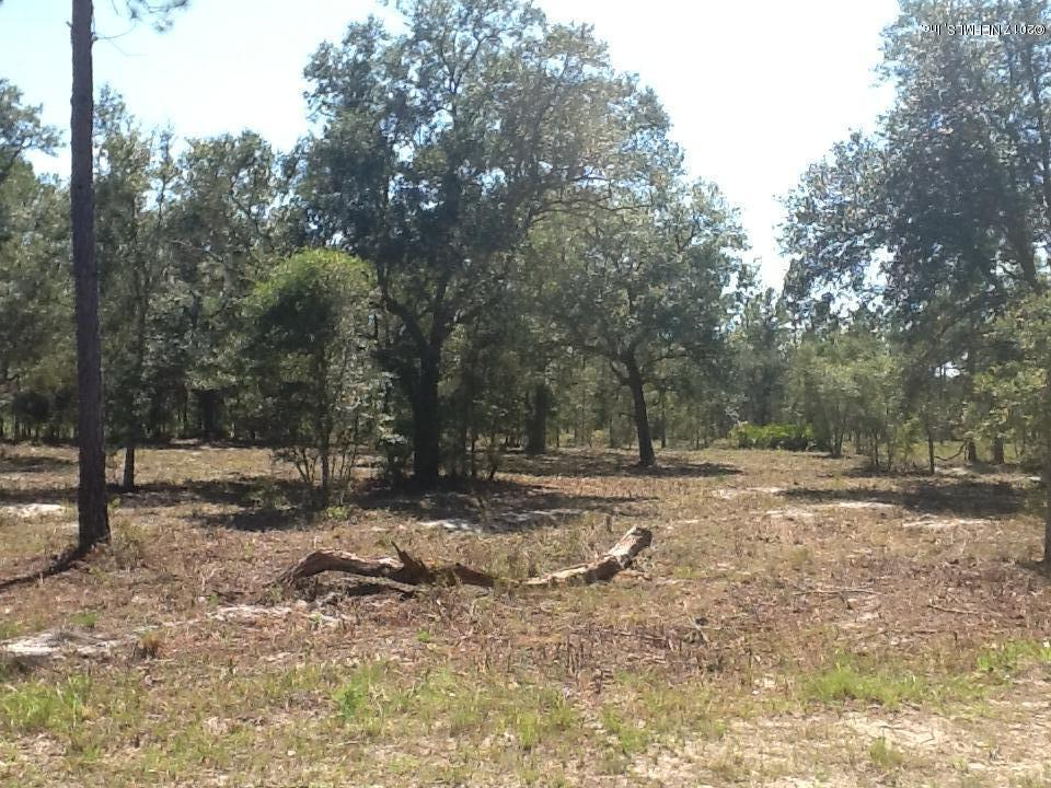 LOT 71 DEACON, BRYCEVILLE, FLORIDA 32009, ,Vacant land,For sale,DEACON,889491