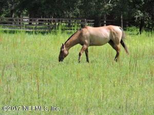 Photo of 1581 Scott Rd, Jacksonville, Fl 32259 - MLS# 891375