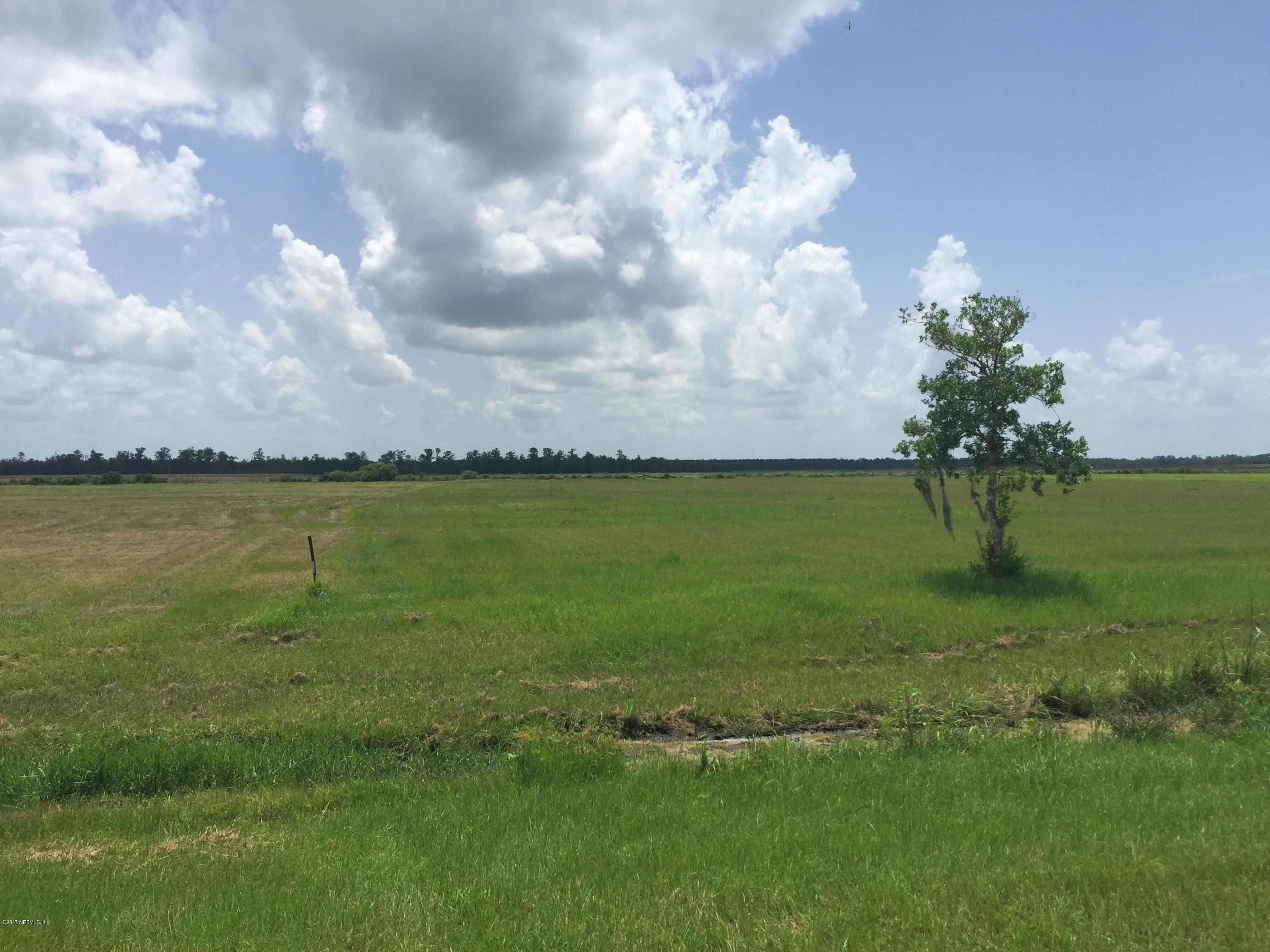 271 PLEASANT COLONY, ELKTON, FLORIDA 32033, ,Vacant land,For sale,PLEASANT COLONY,895505