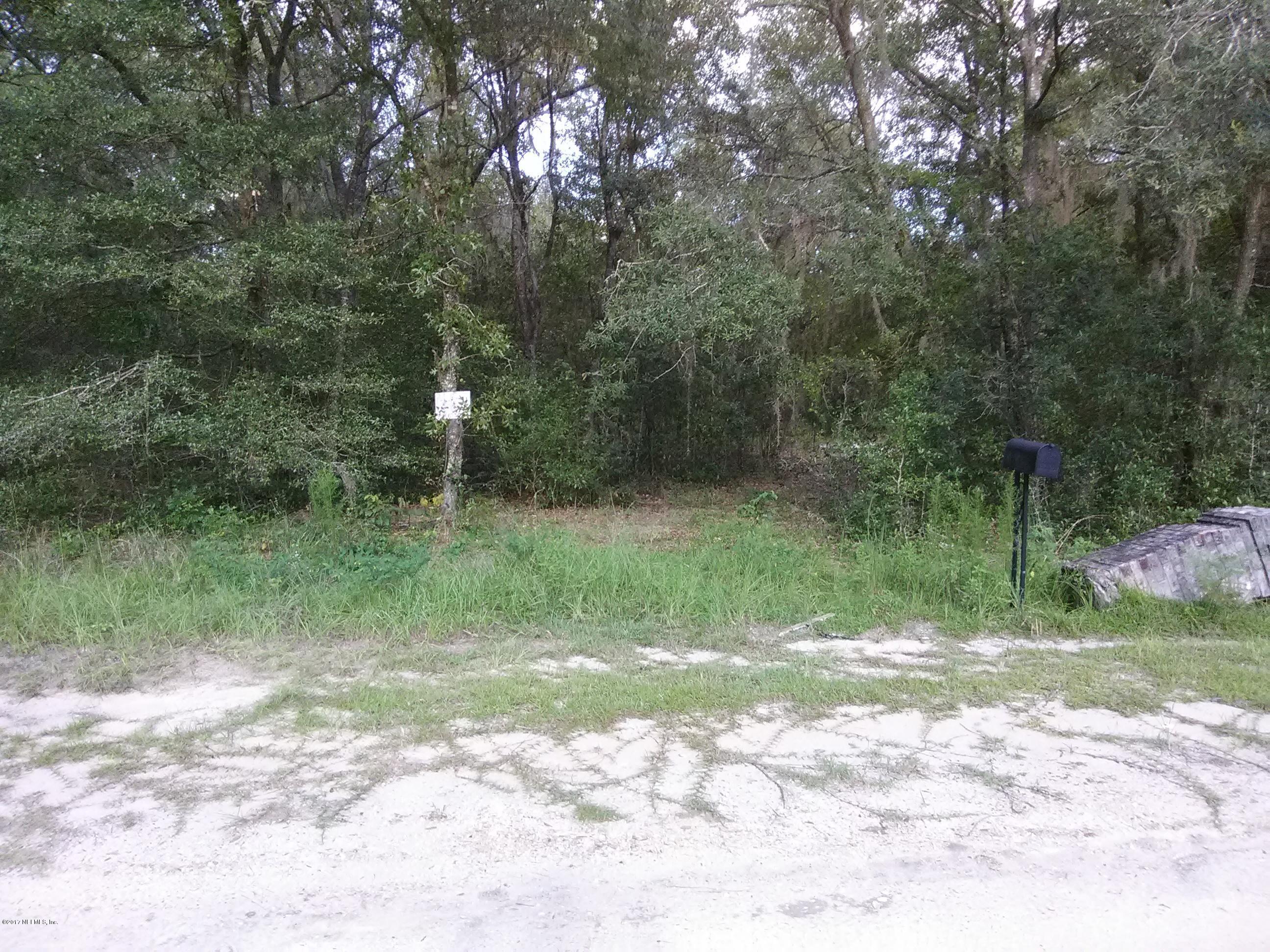 526 MICHAEL, INTERLACHEN, FLORIDA 32148, ,Vacant land,For sale,MICHAEL,900568