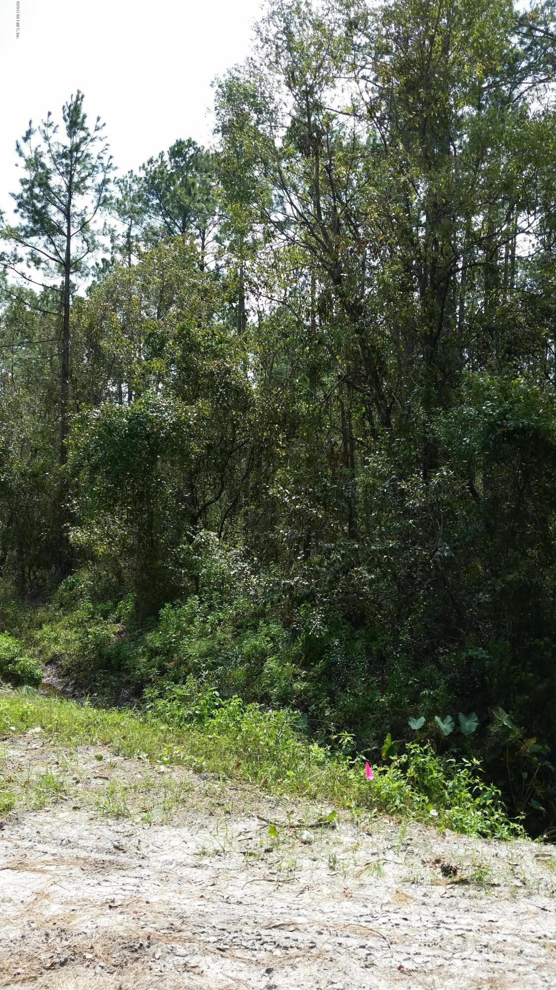 9800 DILLON- HASTINGS- FLORIDA 32145, ,Vacant land,For sale,DILLON,901209