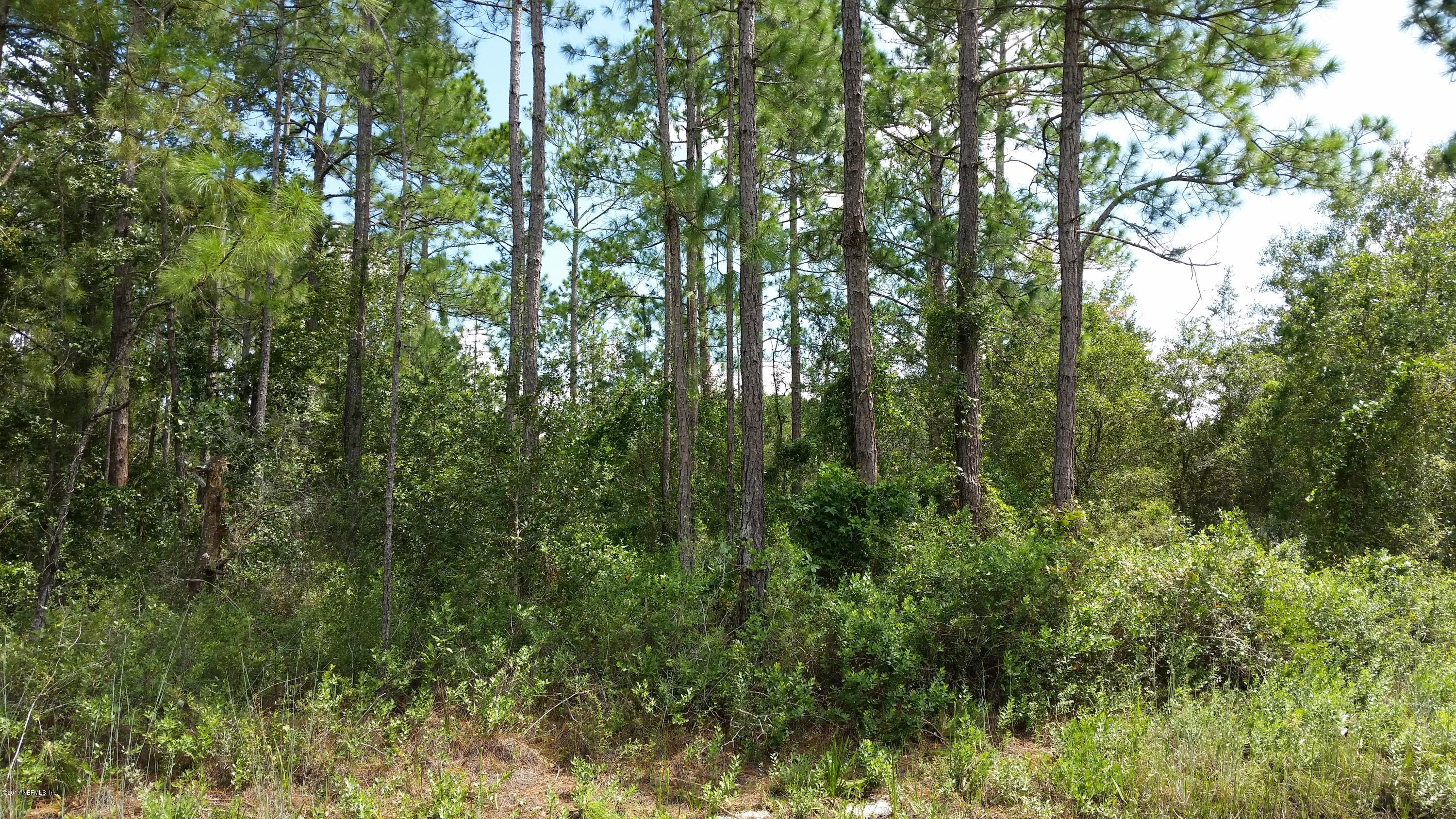 9850 MCMAHON, HASTINGS, FLORIDA 32145, ,Vacant land,For sale,MCMAHON,901210