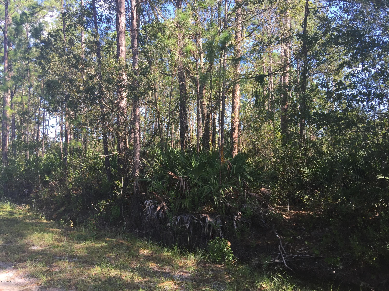 0 MCALLISTER, MIDDLEBURG, FLORIDA 32068, ,Vacant land,For sale,MCALLISTER,896882