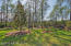 Private Preserve Lot - No Neighbors to Side of you!