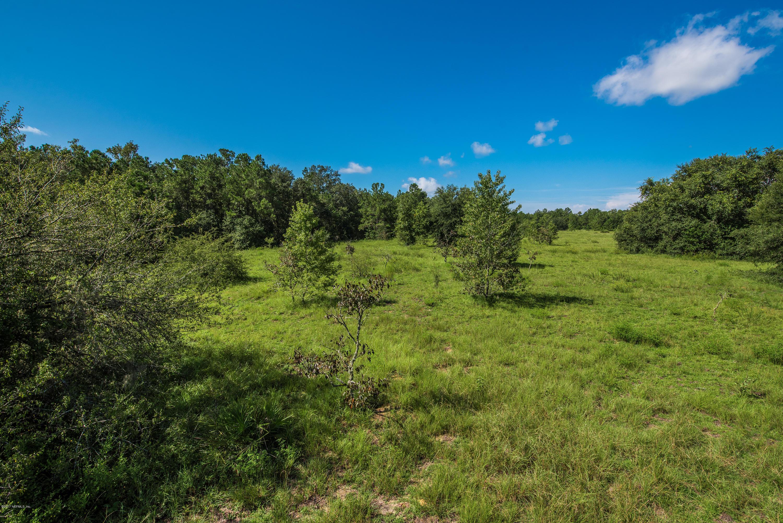 5355 ST AMBROSE CHURCH, ELKTON, FLORIDA 32033, ,Vacant land,For sale,ST AMBROSE CHURCH,902528