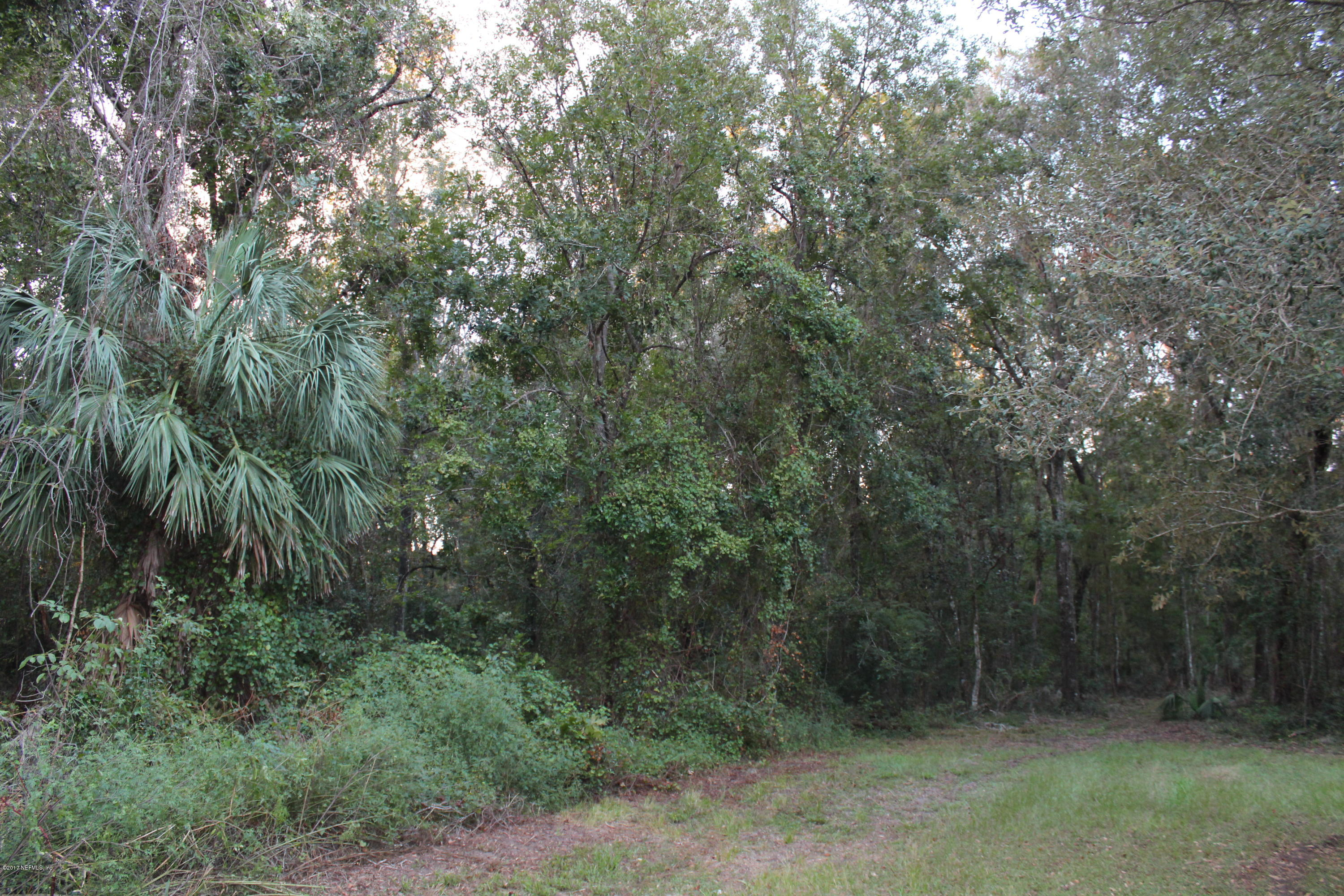 0 DOGWOOD, FLORAHOME, FLORIDA 32140, ,Vacant land,For sale,DOGWOOD,902268