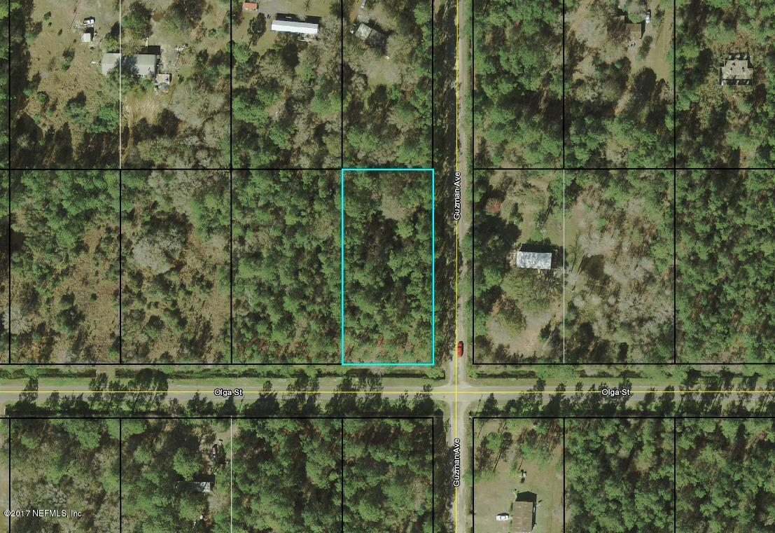 4300 OLGA, HASTINGS, FLORIDA 32145, ,Vacant land,For sale,OLGA,903651