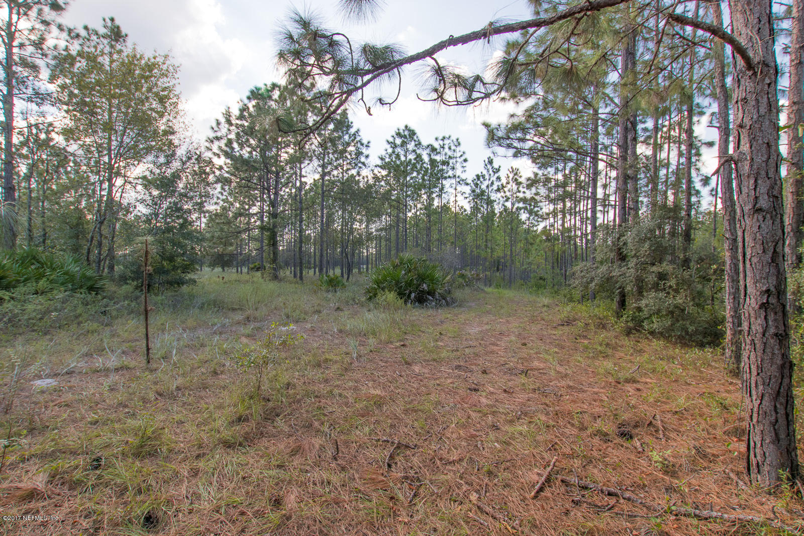 0 RON, GREEN COVE SPRINGS, FLORIDA 32043, ,Vacant land,For sale,RON,903634