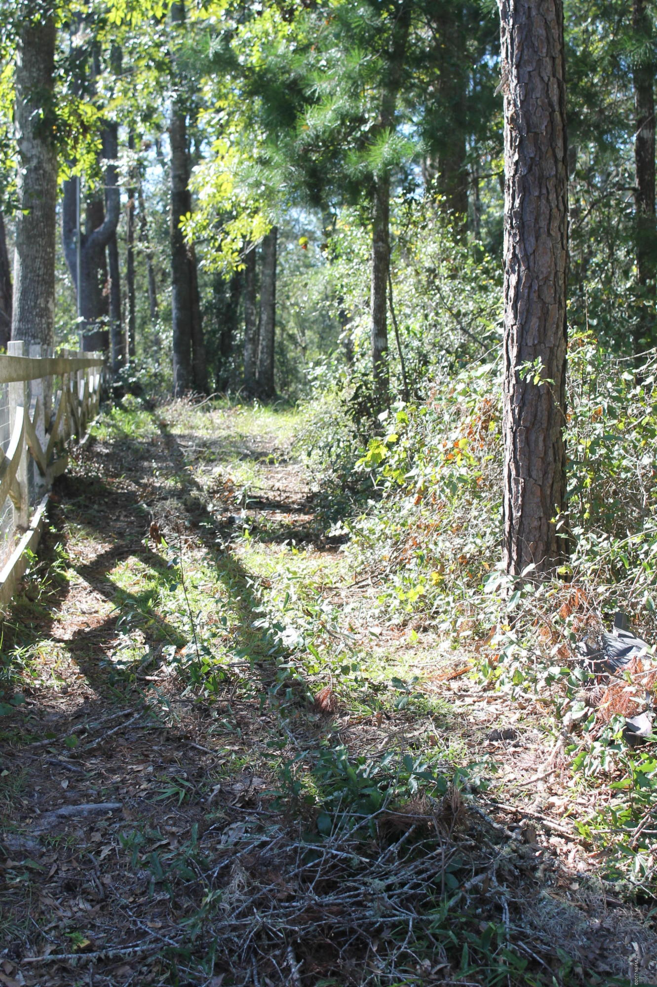 10526 MULBERRY LANDING, HILLIARD, FLORIDA 32046, ,Vacant land,For sale,MULBERRY LANDING,906680