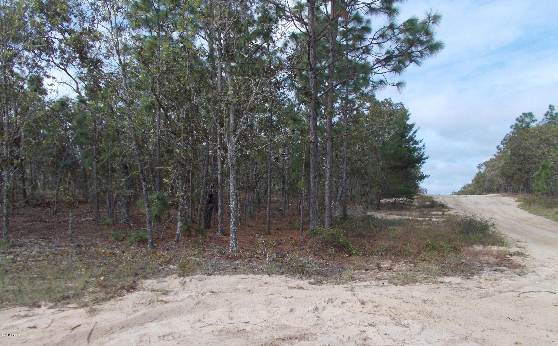 7248 DAVIDSON, KEYSTONE HEIGHTS, FLORIDA 32656, ,Vacant land,For sale,DAVIDSON,913831