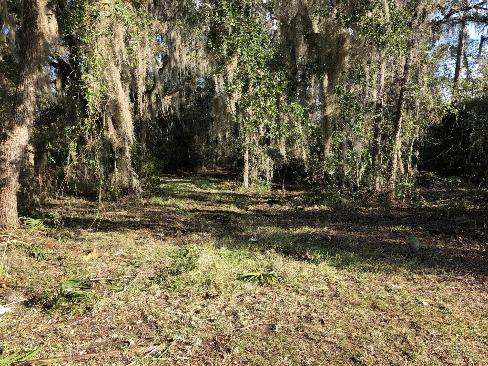 328 CEDAR CREEK, PALATKA, FLORIDA 32177, ,Vacant land,For sale,CEDAR CREEK,904999