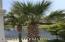 4917 KEY LIME DR, 208, JACKSONVILLE, FL 32256