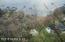 14004 MANDARIN OAKS LN, JACKSONVILLE, FL 32223