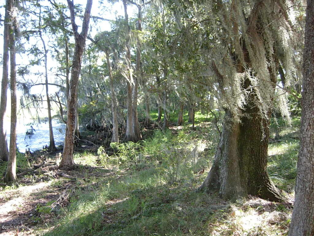 0 BAYARD, GREEN COVE SPRINGS, FLORIDA 32043, ,Vacant land,For sale,BAYARD,919380