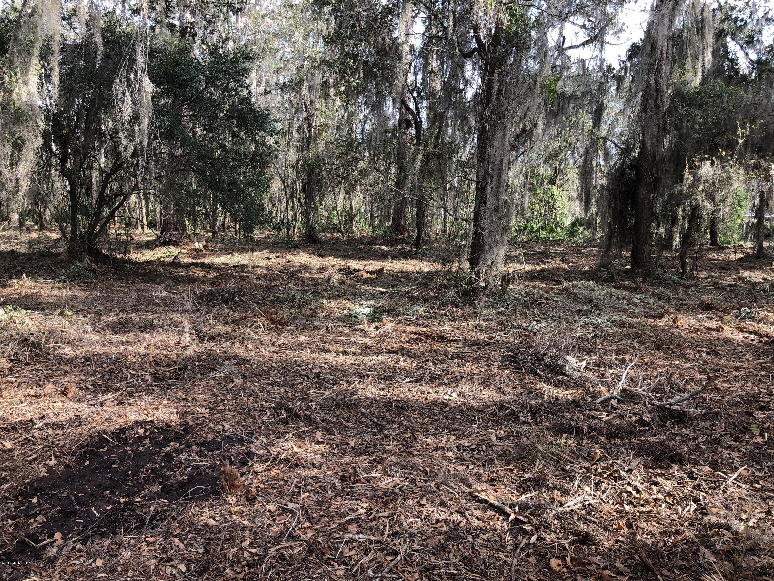 326 CEDAR CREEK, PALATKA, FLORIDA 32177, ,Vacant land,For sale,CEDAR CREEK,874890