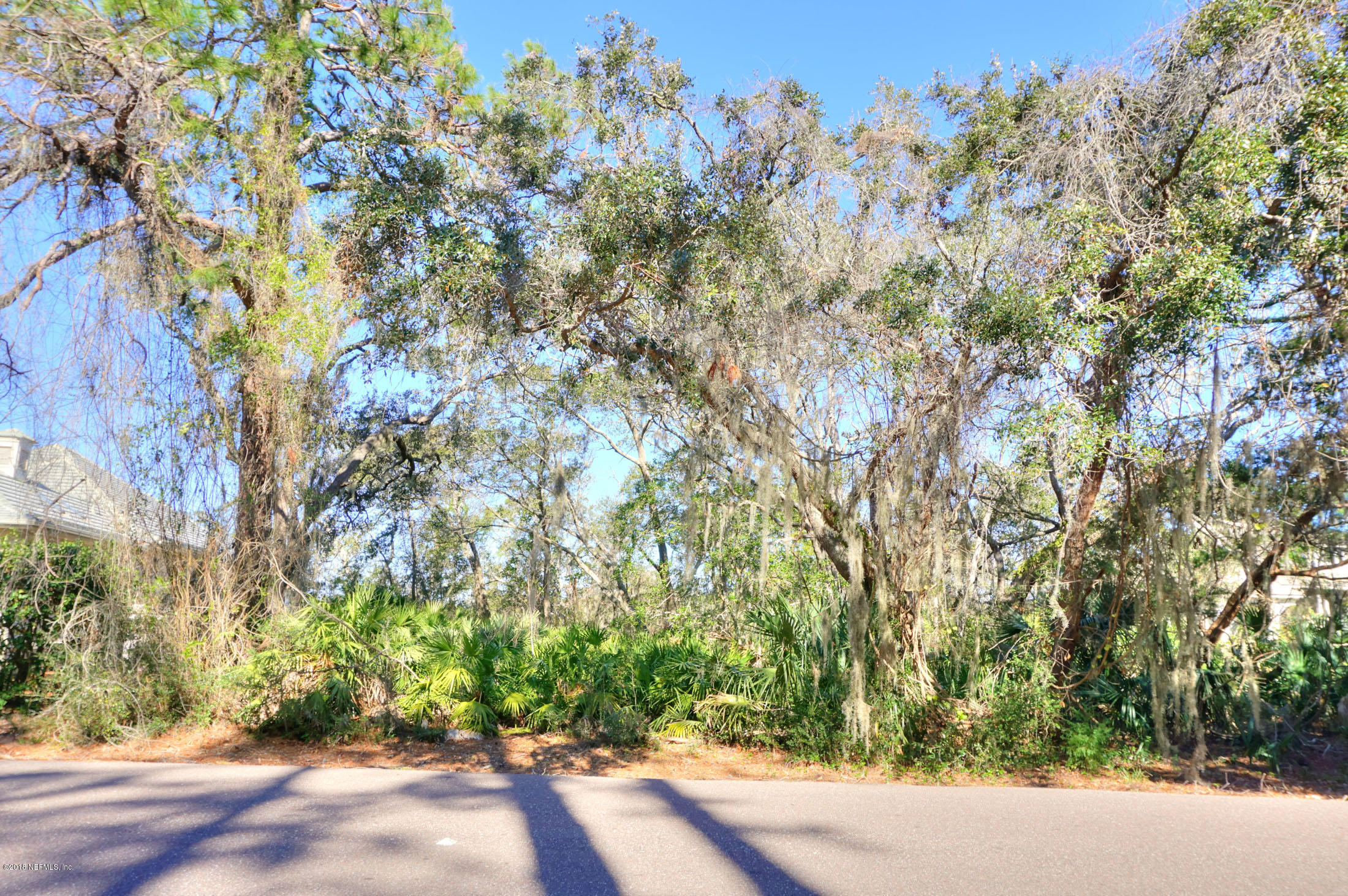 LOT 42 LONG POINT, FERNANDINA BEACH, FLORIDA 32034, ,Vacant land,For sale,LONG POINT,919649