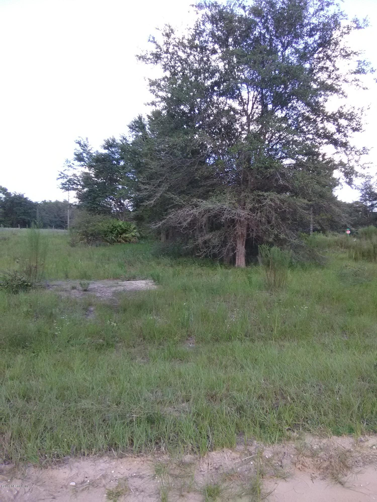 602 LENORE, INTERLACHEN, FLORIDA 32148, ,Vacant land,For sale,LENORE,920363
