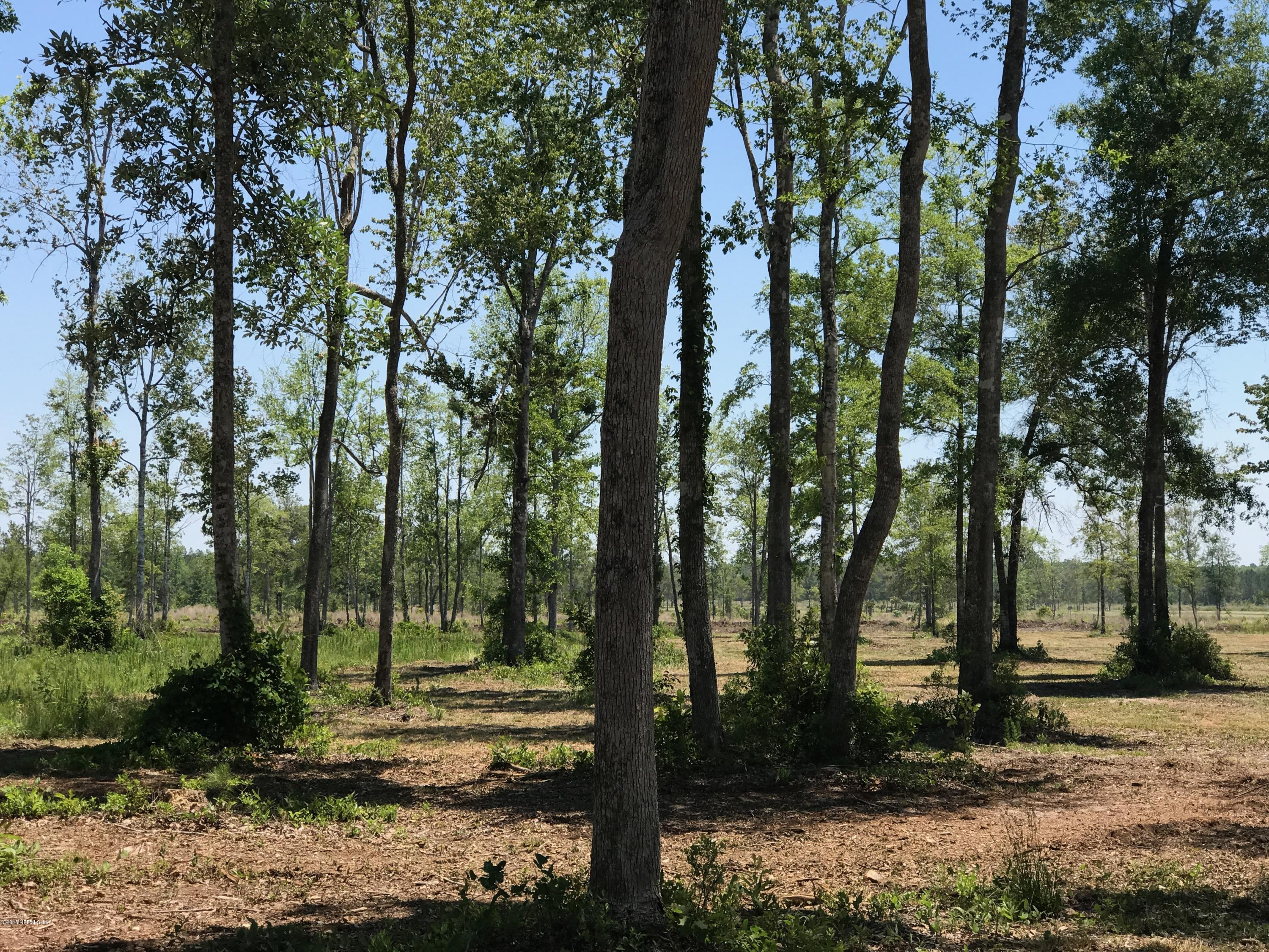 0 OLD DIXIE, CALLAHAN, FLORIDA 32011, ,Vacant land,For sale,OLD DIXIE,924272