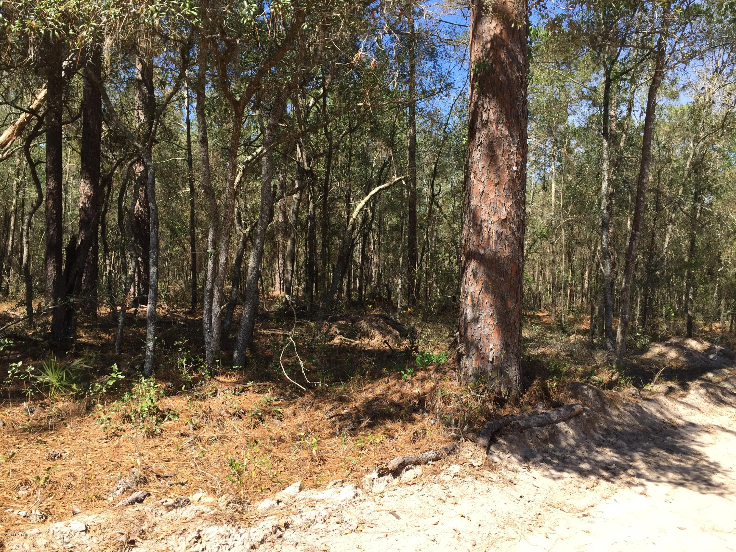 0 HART LAKE, INTERLACHEN, FLORIDA 32148, ,Vacant land,For sale,HART LAKE,923467