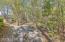 Woodsy backyard view of Preserve